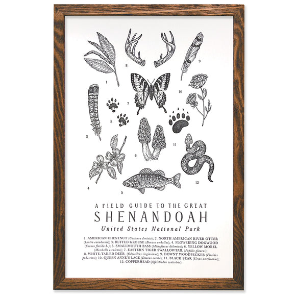 Shenandoah National Park Field Guide 11x17 Print