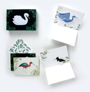 Aquatic Birds (Set of 8 cards)