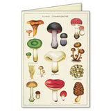 Jardin Plants Assorted Note Cards (Set of 8)