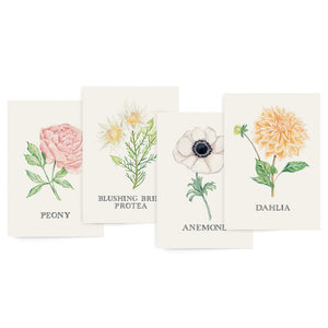 Botanic Variety Box Set