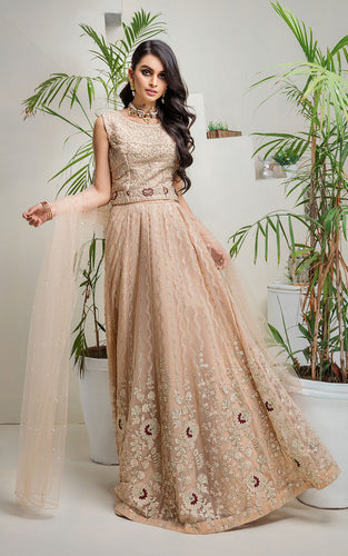Net Embroidered Lehenga & Blouse