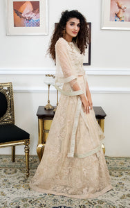 Lehenga and Blouse
