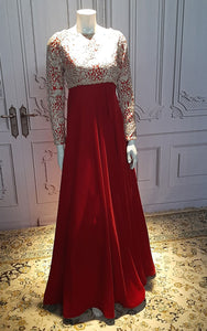 Net Embroidered Velvet Dress