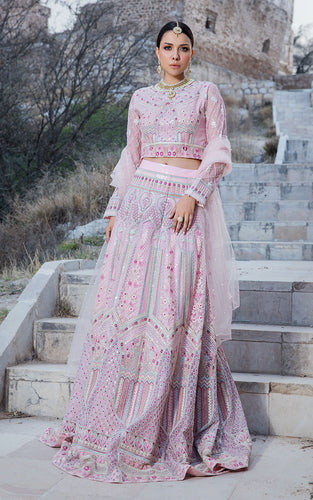 Embroidered Lehenga & Blouse