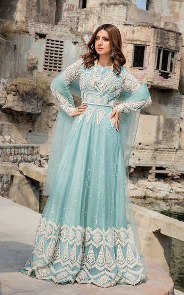 Net Appliqued Embroidered Dress