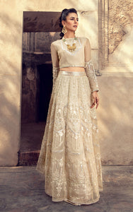 Organza Embroidered Blouse And Lehenga
