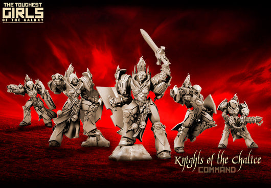 Knights Of The Chalice - Command Group - LAminifigs