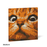 Cat Eyes Brick Paintings - LAminifigs