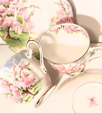 Blossom Time by Royal Albert Collection, Vintage Tea Cups & Saucers Set