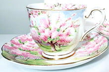 Load image into Gallery viewer, Blossom Time by Royal Albert Collection, Vintage Tea Cups & Saucers Set