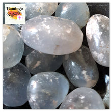 Load image into Gallery viewer, CELESTITE TUMBLED STONE - BULK LOT