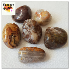 CRAZY LACE AGATE TUMBLED STONE - BULK LOT