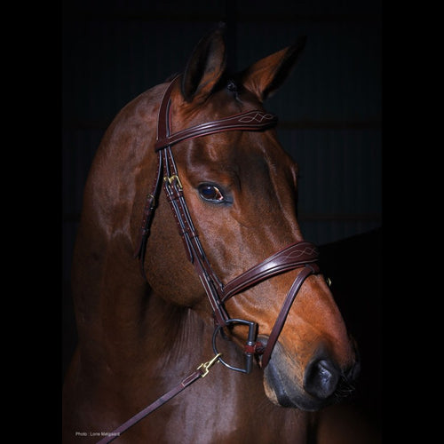 Dy'on Collection Anatomic Flash Noseband Bridle with Fancy Stitching