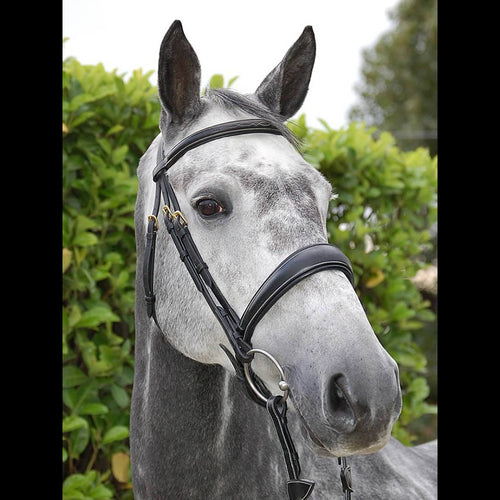 Dy'on Collection Dressage Noseband Bridle