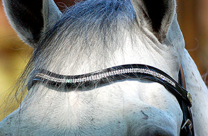 Dy'on Swarovski Browbands - PREORDER