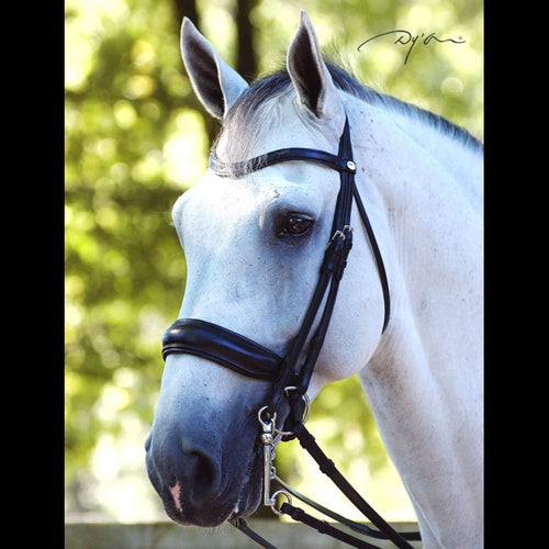 Dy'on Dressage Collection Double Bridle Flat Leather