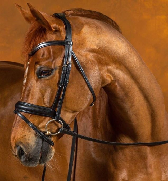 Dy'on Dressage Flat Leather Snaffle Medium Flash Noseband - Comfort (not Crank)