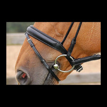 Dy'on Dressage Bridle Medium Flash Noseband- Comfort (Not Crank) -Black Leather