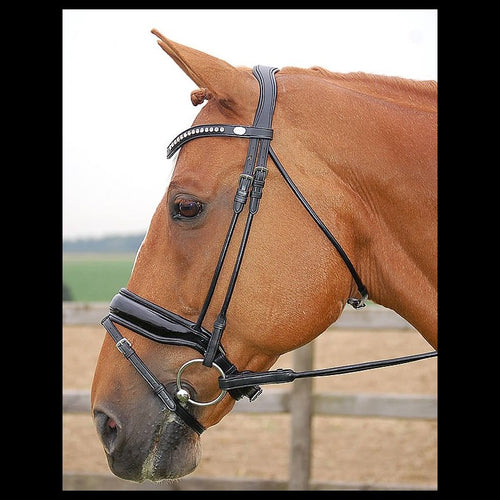 Dy'on Dressage Bridle Large Crank Flash Noseband