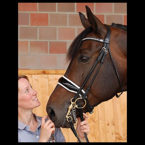 Dy'on Dressage Collection Rolled Double Bridle