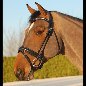 Dy'on Dressage Bridle Medium Crank Noseband- Black Padded Leather
