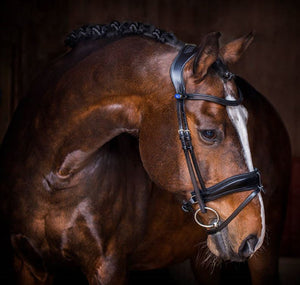 PS of Sweden Flying Change Bridle - PREORDER