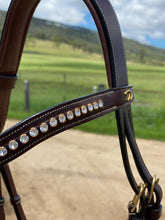 Dy'on Collection Semi-Custom Flash Noseband Bridle