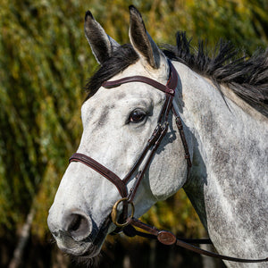 Dy'on La Cense Bridle with Cavesson Noseband