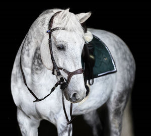 PS of Sweden NIRAK Bridle