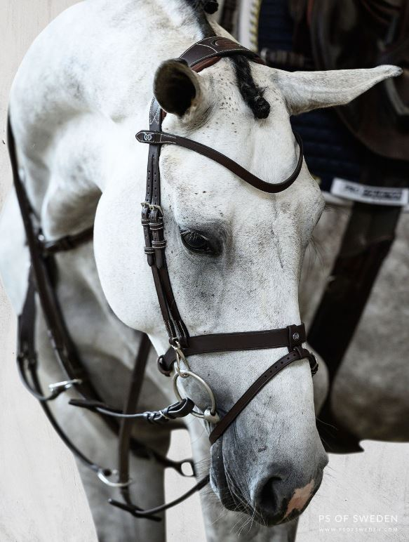 PS of Sweden LONDON Bridle