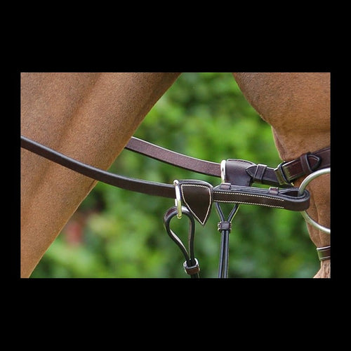 Dy'on Working Collection Web Reins with Leather Loops 5/8