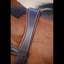 Dy'on Working Collection Classic Flash Bridle