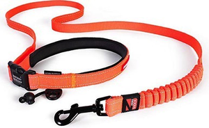 EzyDog Road Runner Leash