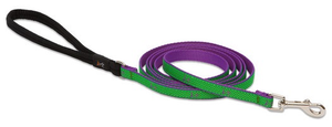 "Lupine Club Collection Leash Augusta Green 1/2"" x 6'"