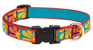 "Lupine Original Collars Dapper Dog SM 1/2"" x 8-12"""