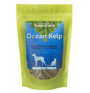 Animal Essentials Organic Ocean Kelp 8oz