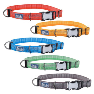 Coastal K9 Explorer Brights Reflective Dog Collar
