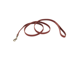 Coastal Circle T Rustic Leather Dog Leash