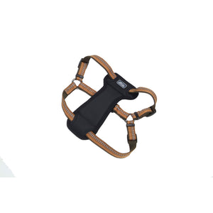 Coastal K9 Explorer Padded Harness