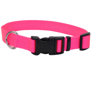 Coastal Adjustable Dog Collar with Plastic Buckle