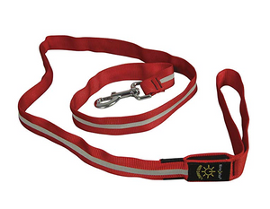 Nite Ize Dawg LED Red Leash 5