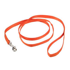 Coastal Single-Ply Nylon Leash