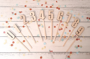 Cake Topper Numbers - Small - Peach n Pine
