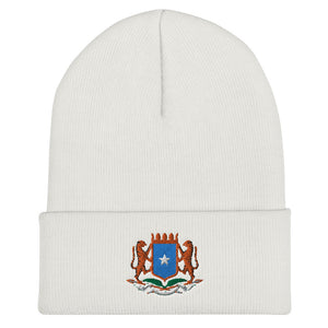 Open image in slideshow, Shabeel Beanie
