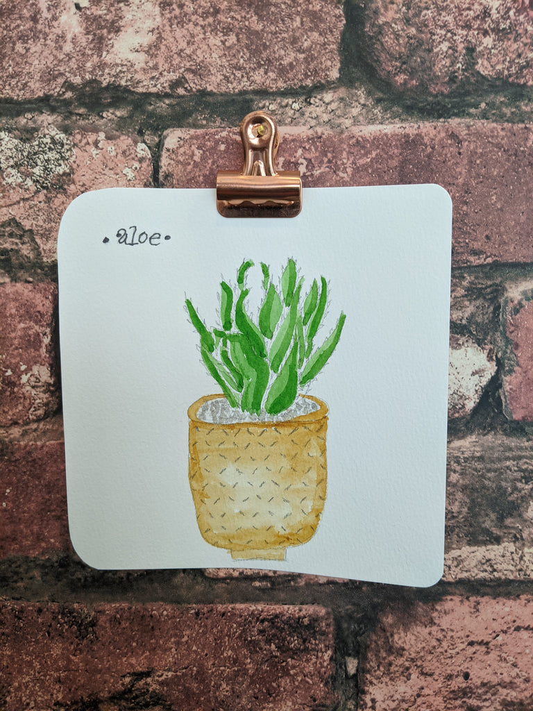 Aloe Watercolor Card