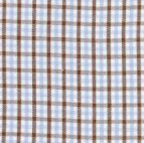 Light Blue and Brown Gingham Shorts (Multiple Styles)