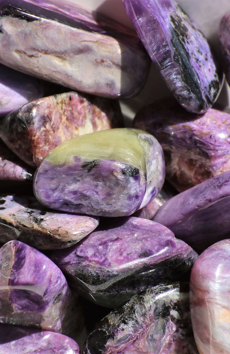 Charoite AA Tumbled Stone (Pack of 6)