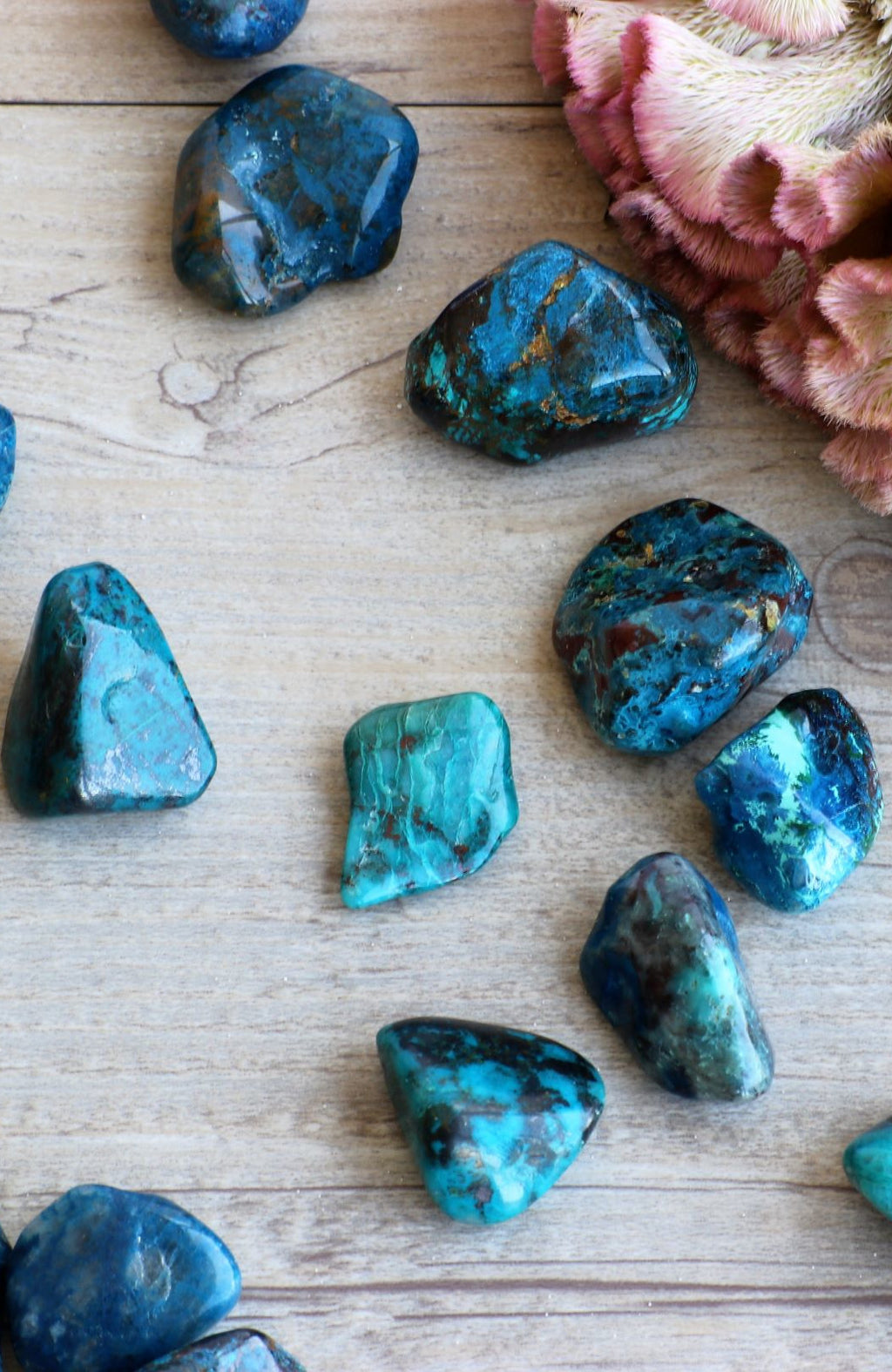 Chrysocolla AAA Tumbled Stone (Pack of 6)