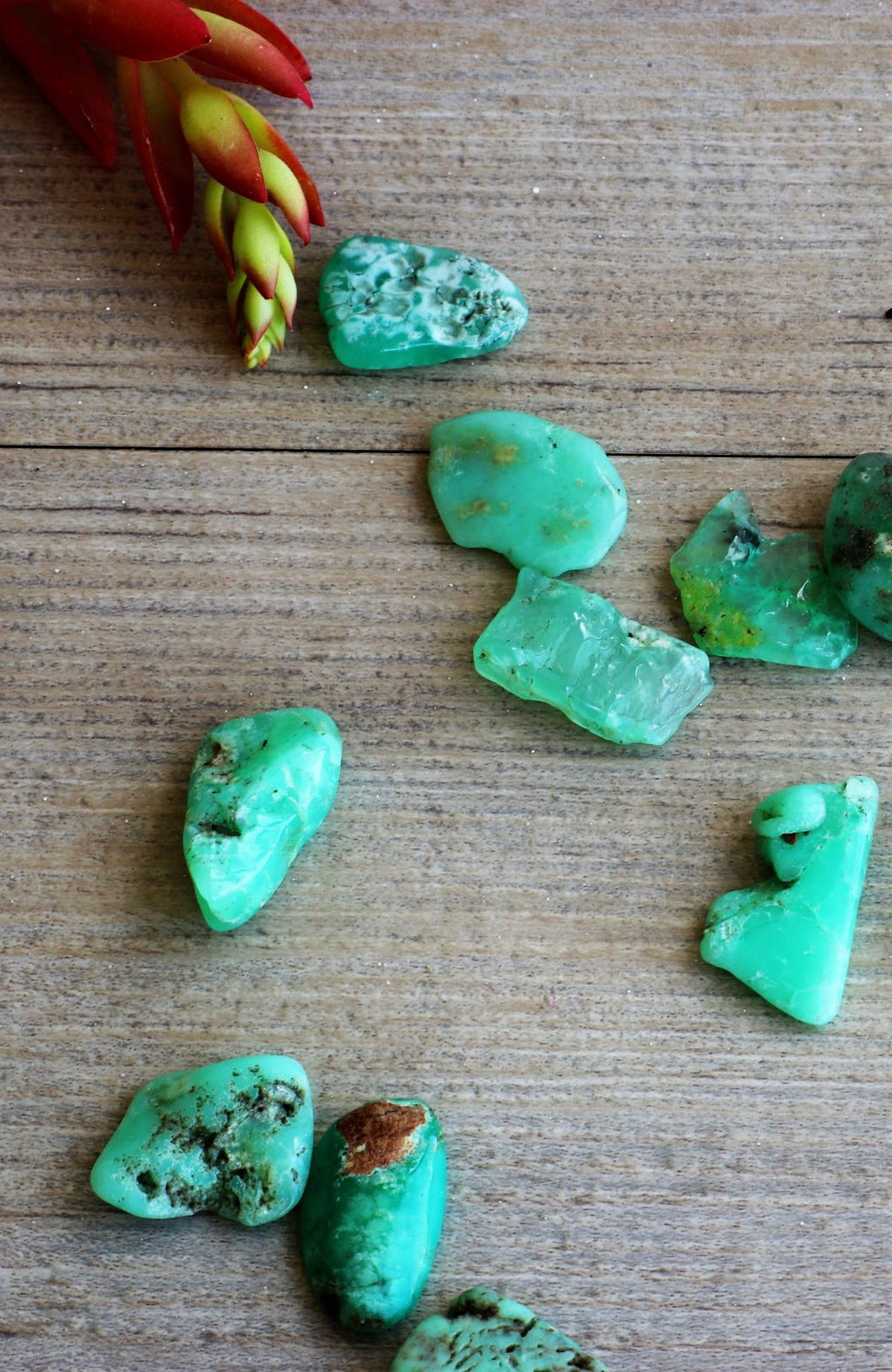 Chrysoprase (Green) Tumbled Stone (Pack of 6)