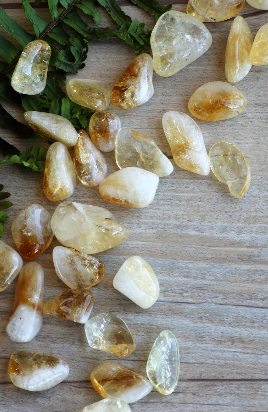 Citrine  AA Tumbled Stone (Pack of 6)
